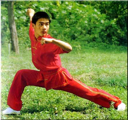 Мабу происхождение боевых искусств гунфу